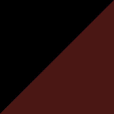 Черный/Бордо